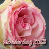 moederdag-2013
